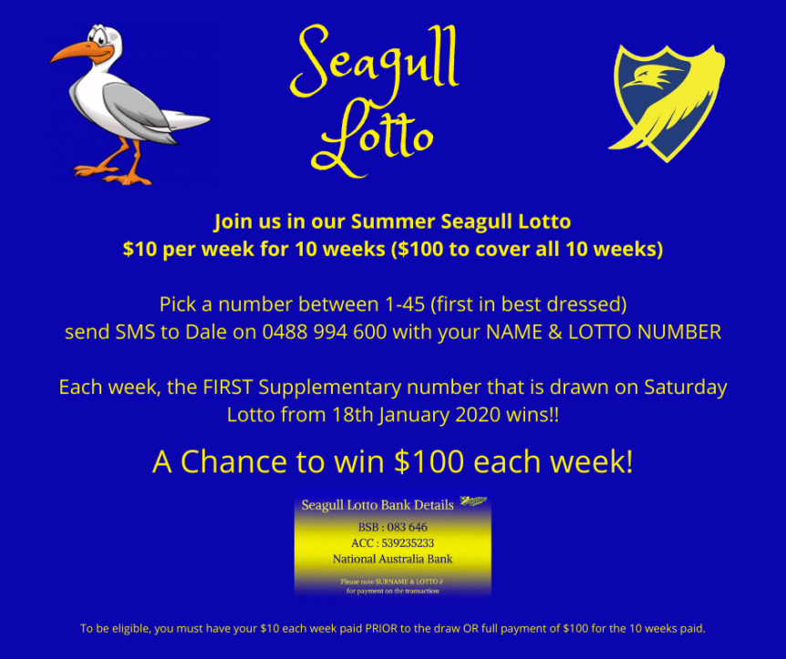 Seagull Lotto (1).png