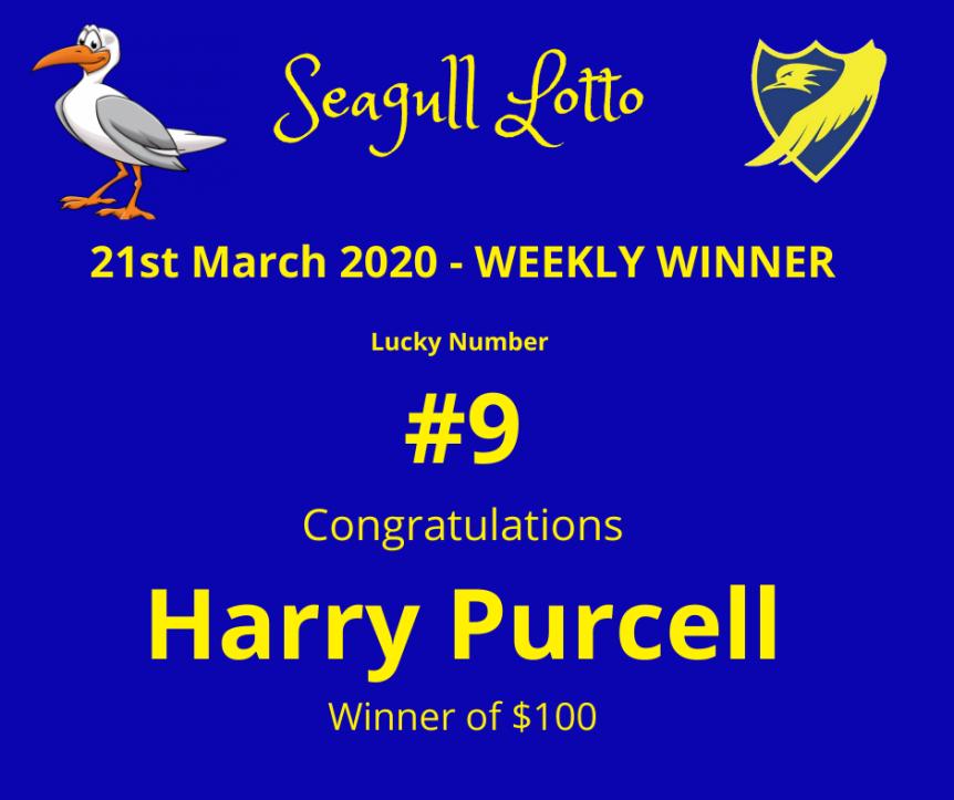Seagull Lotto (10)