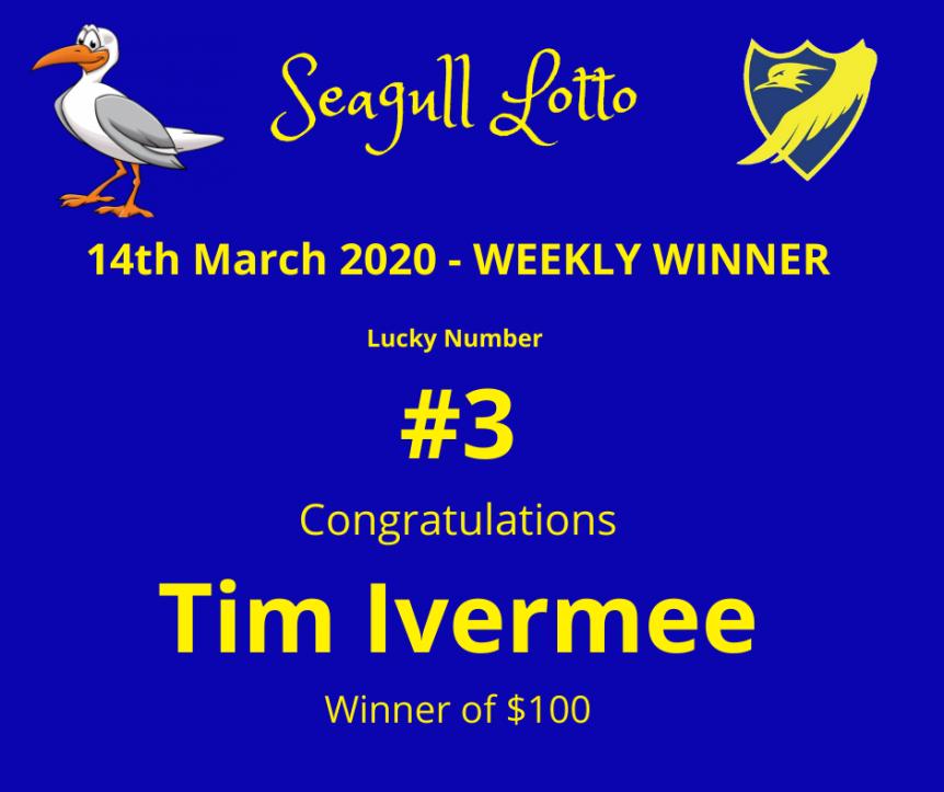 Seagull Lotto (9)